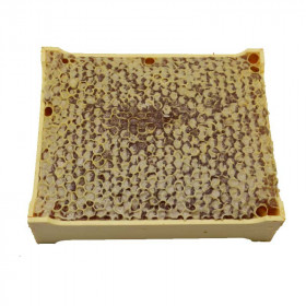Mountain honeycomb 400g - France